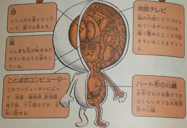 目玉おやじ解剖図(ゲゲゲの鬼太郎)-1